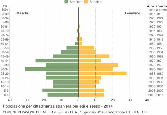 Grafico cittadini stranieri - Pavone del Mella 2014