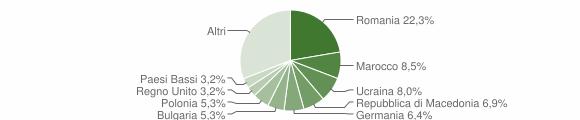 Grafico cittadinanza stranieri - Polpenazze del Garda 2010