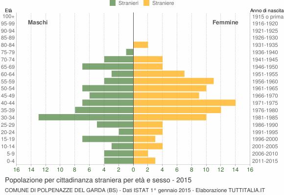 Grafico cittadini stranieri - Polpenazze del Garda 2015