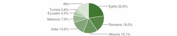 Grafico cittadinanza stranieri - Orio Litta 2011