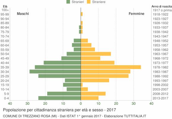 Grafico cittadini stranieri - Trezzano Rosa 2017