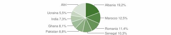 Grafico cittadinanza stranieri - Palazzolo sull'Oglio 2010