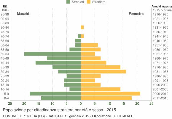 Grafico cittadini stranieri - Pontida 2015