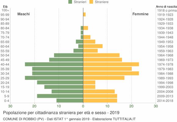 Grafico cittadini stranieri - Robbio 2019