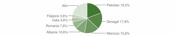 Grafico cittadinanza stranieri - Verdello 2010