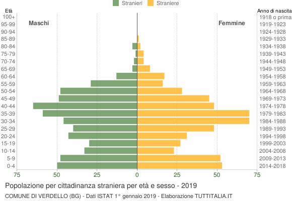 Grafico cittadini stranieri - Verdello 2019