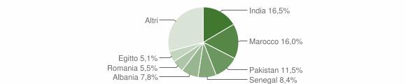 Grafico cittadinanza stranieri - Bagnolo Mella 2010