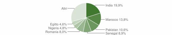 Grafico cittadinanza stranieri - Bagnolo Mella 2015