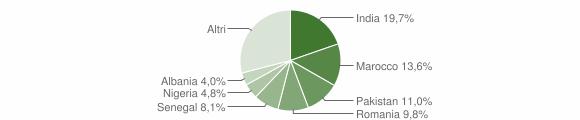 Grafico cittadinanza stranieri - Bagnolo Mella 2018