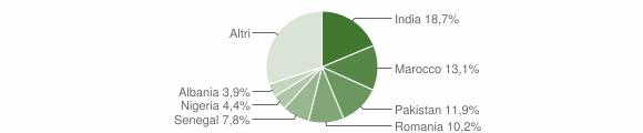 Grafico cittadinanza stranieri - Bagnolo Mella 2019