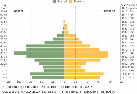Grafico cittadini stranieri - Bagnolo Mella 2016