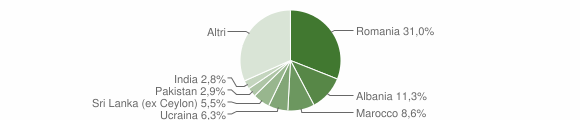 Grafico cittadinanza stranieri - Salò 2009