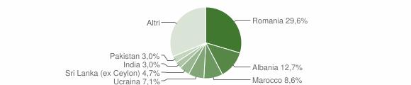 Grafico cittadinanza stranieri - Salò 2010