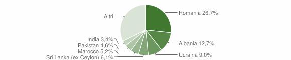 Grafico cittadinanza stranieri - Salò 2016
