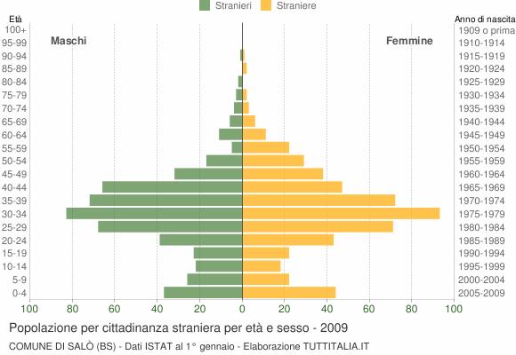 Grafico cittadini stranieri - Salò 2009