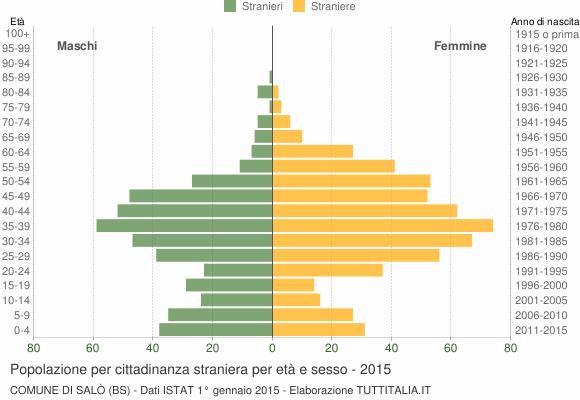 Grafico cittadini stranieri - Salò 2015