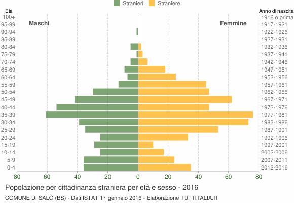 Grafico cittadini stranieri - Salò 2016