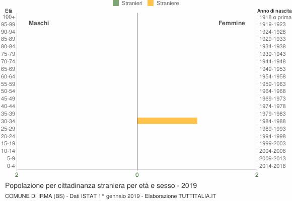 Grafico cittadini stranieri - Irma 2019