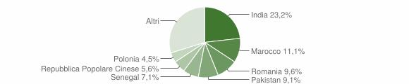 Grafico cittadinanza stranieri - Barbariga 2007