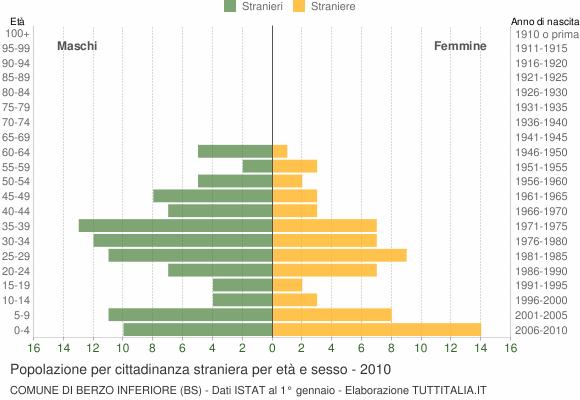 Grafico cittadini stranieri - Berzo Inferiore 2010