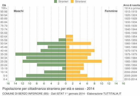 Grafico cittadini stranieri - Berzo Inferiore 2014