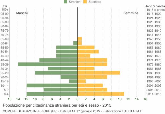 Grafico cittadini stranieri - Berzo Inferiore 2015
