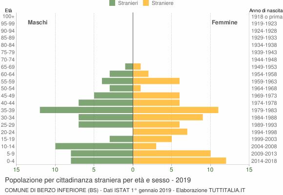 Grafico cittadini stranieri - Berzo Inferiore 2019