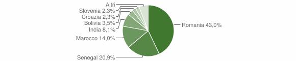 Grafico cittadinanza stranieri - Castel Gabbiano 2011