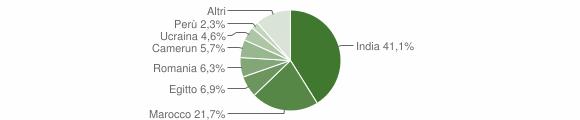 Grafico cittadinanza stranieri - Castelgerundo 2011