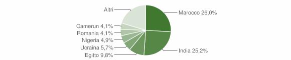Grafico cittadinanza stranieri - Castelgerundo 2018