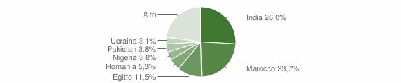 Grafico cittadinanza stranieri - Castelgerundo 2019