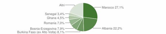 Grafico cittadinanza stranieri - Marcheno 2010