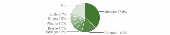Grafico cittadinanza stranieri - Medolago 2019