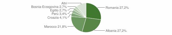 Grafico cittadinanza stranieri - Cividate Camuno 2008