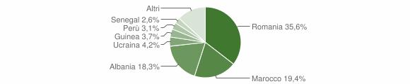 Grafico cittadinanza stranieri - Cividate Camuno 2013