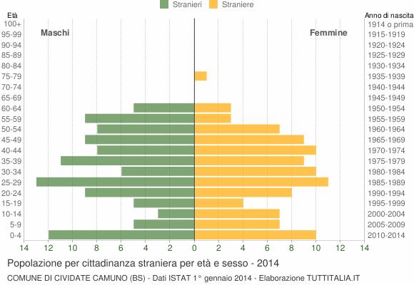 Grafico cittadini stranieri - Cividate Camuno 2014