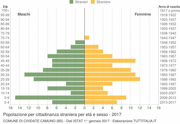 Grafico cittadini stranieri - Cividate Camuno 2017