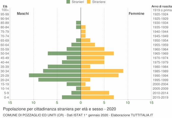 Grafico cittadini stranieri - Pozzaglio ed Uniti 2020