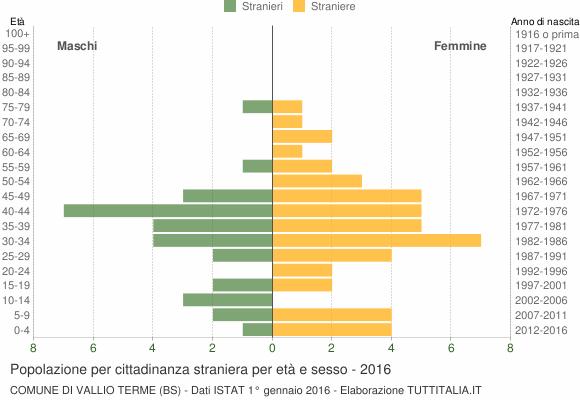 Grafico cittadini stranieri - Vallio Terme 2016