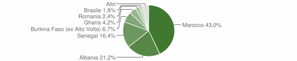 Grafico cittadinanza stranieri - Casto 2019