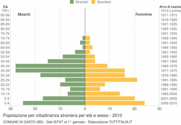 Grafico cittadini stranieri - Casto 2010