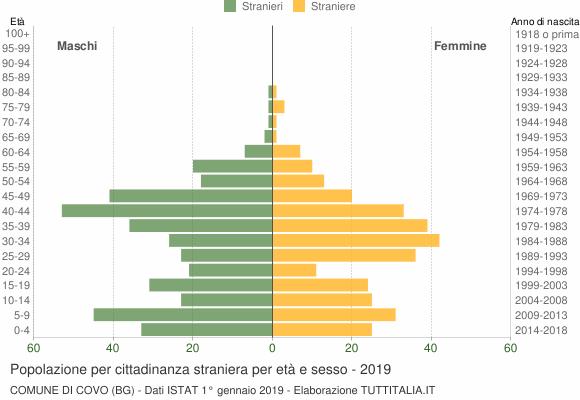 Grafico cittadini stranieri - Covo 2019