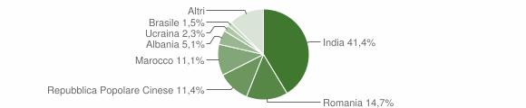 Grafico cittadinanza stranieri - Goito 2019