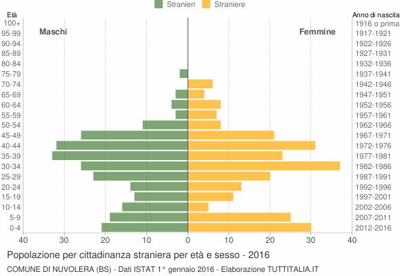 Grafico cittadini stranieri - Nuvolera 2016