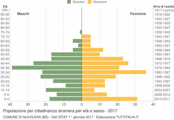 Grafico cittadini stranieri - Nuvolera 2017