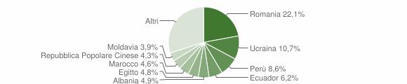 Grafico cittadinanza stranieri - Rho 2018