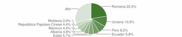Grafico cittadinanza stranieri - Rho 2019
