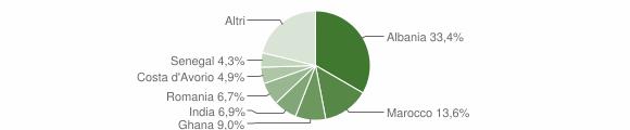 Grafico cittadinanza stranieri - Nuvolento 2007