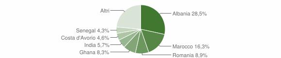 Grafico cittadinanza stranieri - Nuvolento 2008