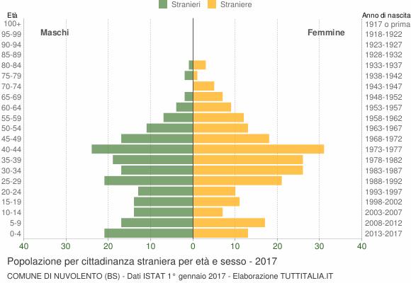 Grafico cittadini stranieri - Nuvolento 2017